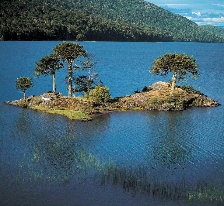 Laguna Icalma ubicada en la Novena Región de Chile.