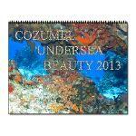 Cozumel underwater calendar