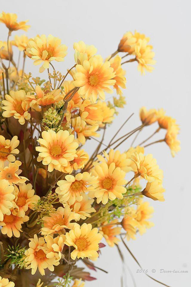 Хризантема букет.