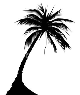 Google Image Result for http://i.istockimg.com/file_thumbview_approve/4392120/2/stock-illustration-4392120-palm-tree.jpgTattoo Ideas, Coolers Projects, Google Search, Beach Tattoo, Trees Illustration, Palms Trees Tattoo Outline, Palm Trees, Tattoo Design, Palms Trees Outline