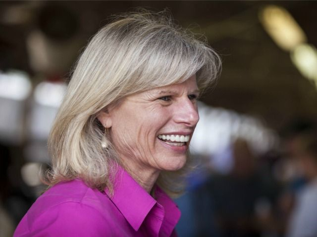 """Democratic Gubernatorial Candidate in Wisconsin Plagiarized Jobs Plan from Other Failed Democrats ------------------------------------------------- Significant sections of the plan, titled """"Mary Burke's Plan: Invest for Success,"""" are word-for-word copies of paragraphs found in plans of failed Democratic gubernatorial campaigns going back to 2008, as well as one instance where it copied a press release from the Obama White House."""