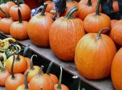 Оранжевое настроение: суп из тыквы и фаршированные кабачки