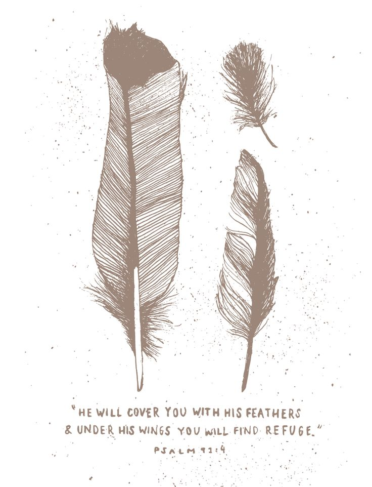 He will cover you with his feathers, and under his wings you will find refuge. -Psalm 91:4