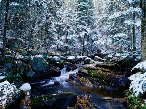 Adirondack Mountains, Lake Placid, NY http://www.vacationrentalpeople.com/vacation-rentals.aspx/World/USA/New-York/Adirondack-Mountains