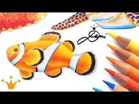 Fisch Zeichnen Clownfisch Malen How To Draw A Clownfish Comment Dessiner Un Poisson Clown Youtube Clown Fish Fish Drawings Drawings