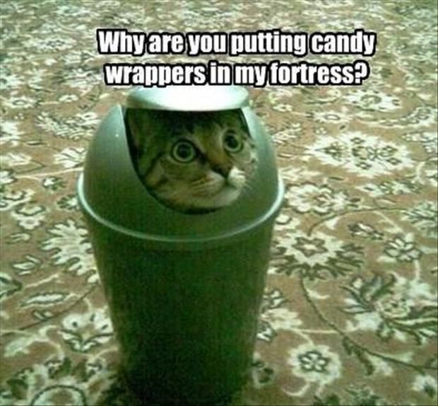 No more candy wrappers, pweaze