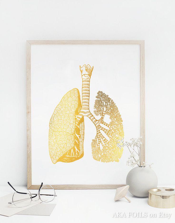 Anatómica del pulmón Print anatomía humana pulmones