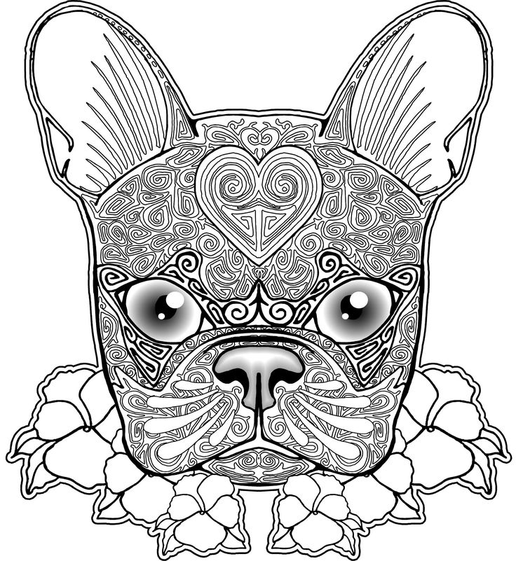 French Coloring Pages Dog Page Free
