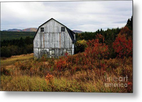 That Old Barn by Tatiana Travelways. Autumn colors and landscape with an old wooden old barn in Quebec, Canada - Metal Fine Art Print #Quebec, #Canada #Fall #Autumn #Barn #Landscape #WallArt #TravelArt