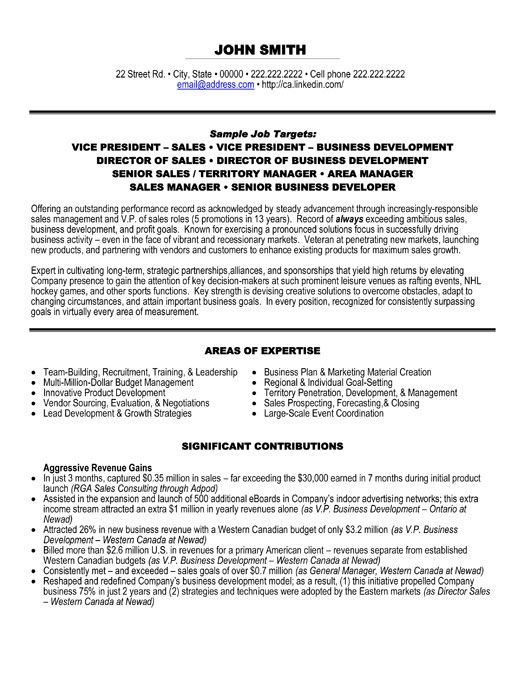 Click Here to Download this Vice President of Sales Resume Template! http://www.resumetemplates101.com/Executive-resume-templates/Template-38/
