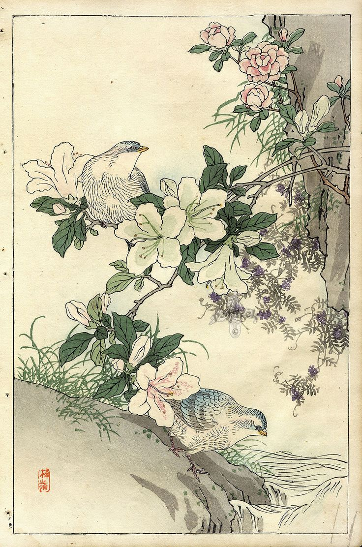 Поздравлением месяцем, открытки японии антикварные