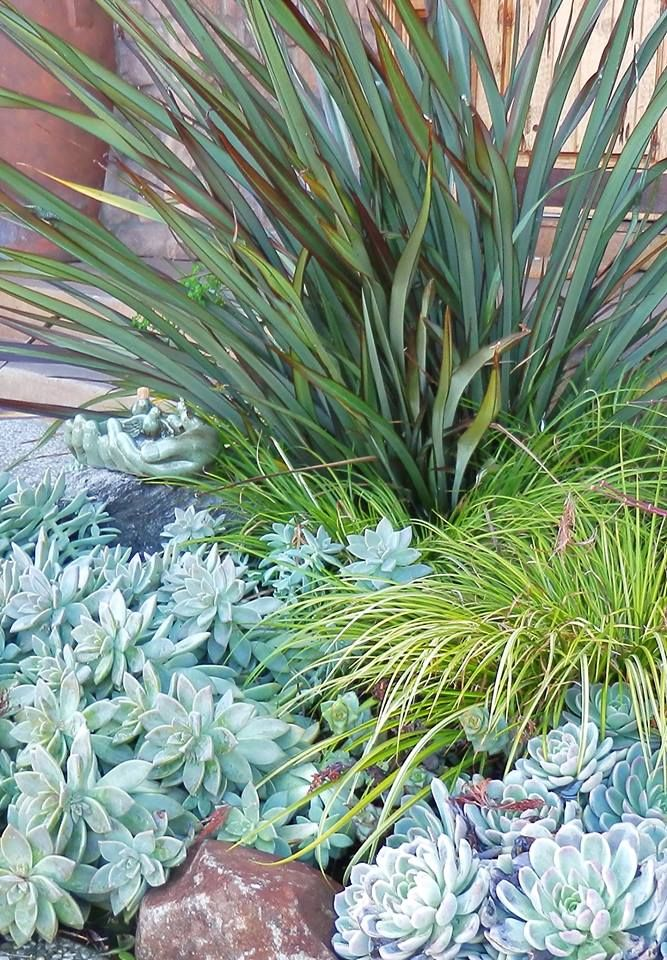254 best images about planting combos on pinterest for Planting schemes with grasses
