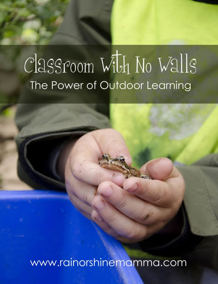 "Classroom With No Walls: The Power of Outdoor Learning. Rain or Shine Mamma. Good post on forest schools in general and ongoing blog with ""lessons""."