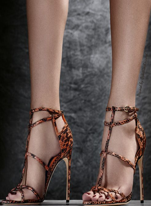 BRIAN ATWOOD  2015   |    my sexy shoes2