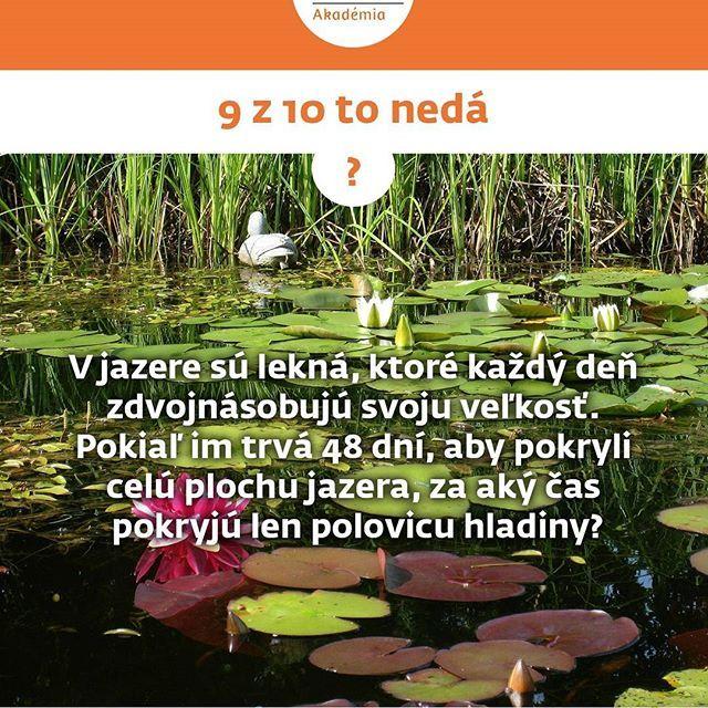 Tak čo, trúfaš si?  http://www.zfpa.sk/9-z-10-neda/ #zfpakademia #zfpa #zfp #kviz #slovensko #financie #gramotnost #otazka #odpovede #financnagramotnost #9z10 #kvalita #matematika #myslenie #piatok