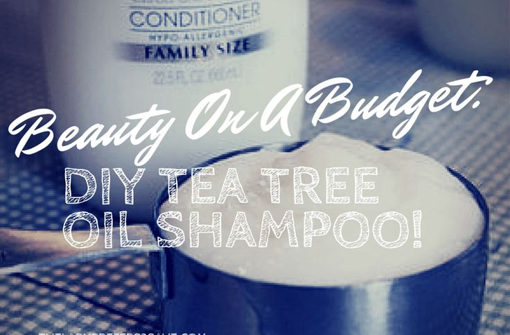 DIY Tea Tree Oil Shampoo 1/8 cup coconut milk, 2/3 cup baking soda, 1/2  teaspoon of Vitamin E oil, 20 drops of tea tree oil, 1/2 tsp olive oil, 1/4 cup filtered water