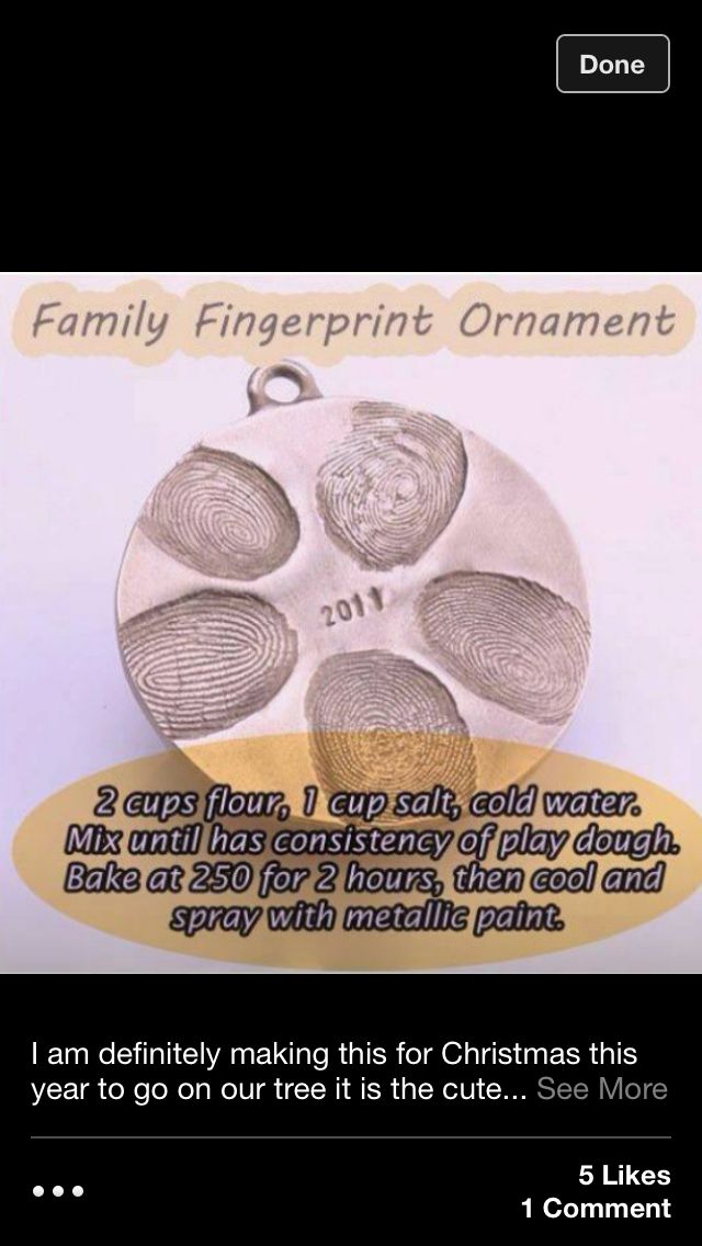 Homemade Christmas ornament--doing this with my puppies.