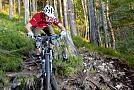 Nasse Wurzeln besser meistern via mountainbike-magazin.de
