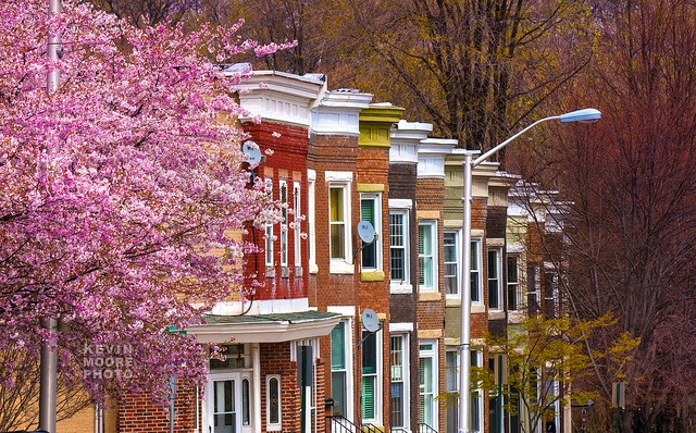 Row Houses — Baltimore, Maryland