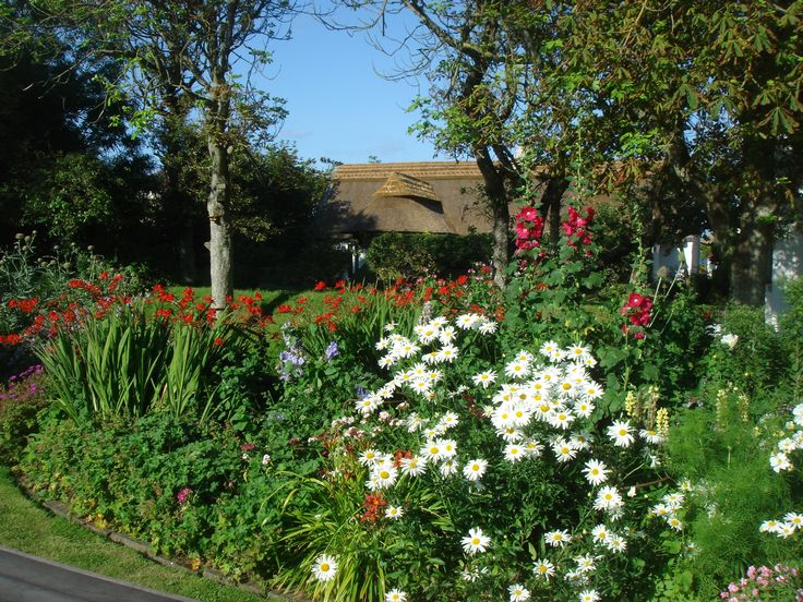 Little Orchard Cottage a midst the organic flower gardens.