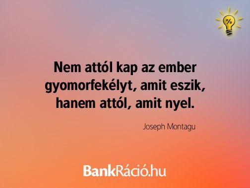 Nem attól kap az ember gyomorfekélyt, amit eszik, hanem attól, amit nyel. - Joseph Montagu, www.bankracio.hu idézet