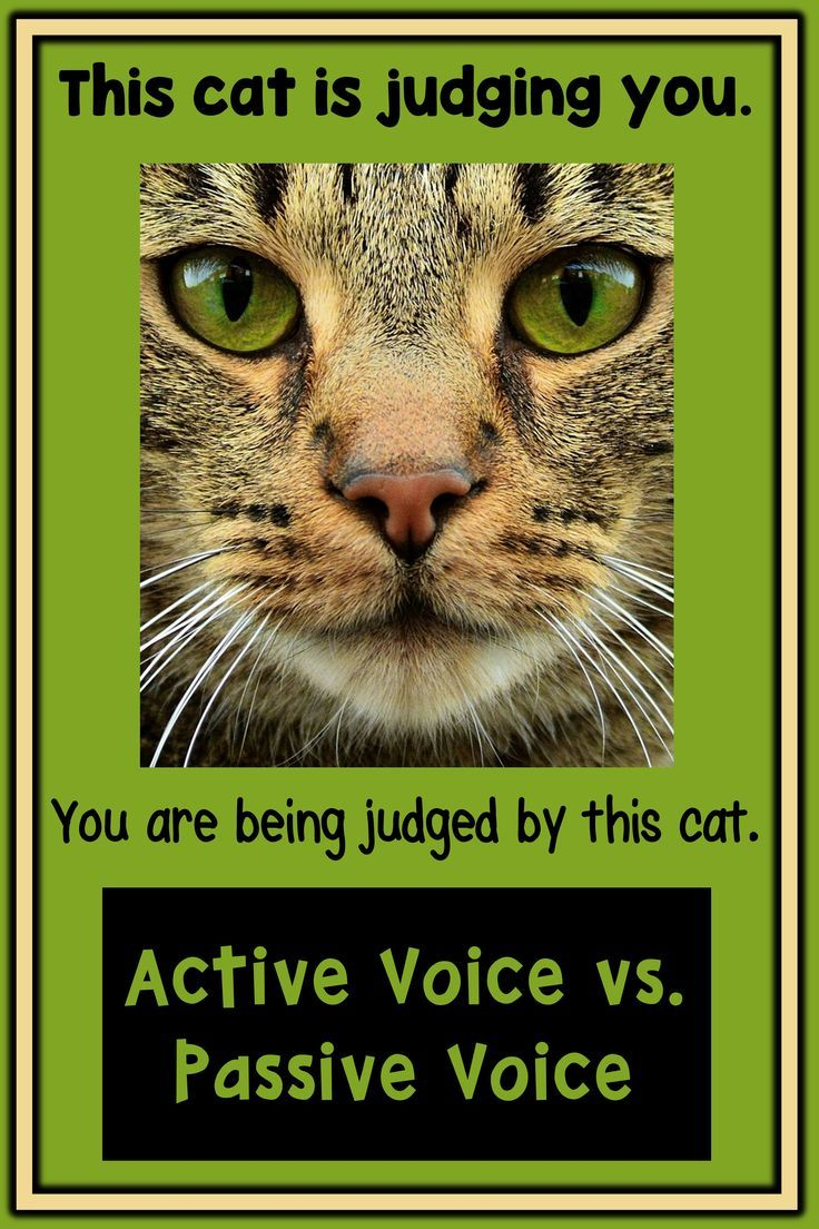 Grammar activity for adult ESL or secondary students learning about active vs. passive voice.