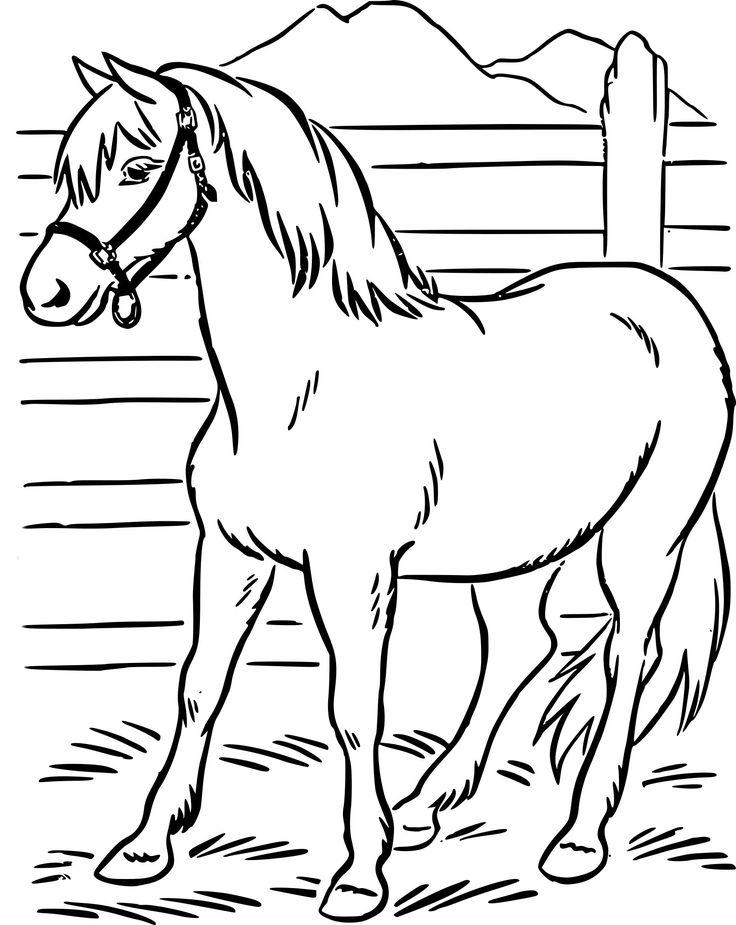 13 Beau De Dessin Facile Cheval Galerie   Coloriage cheval ...
