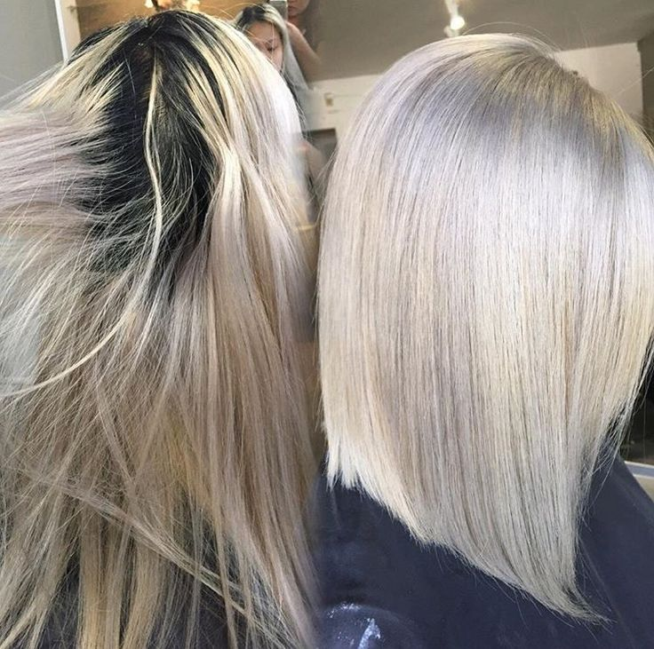 ROOT TOUCH UP: Level 2 To Silver Ash Blonde