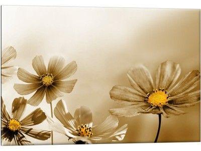 Obraz Miodowe Środki 60x40 Kwiaty Obrazy Sepia 24H