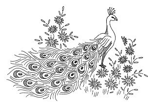 243 best PEACOCK line drawings images on Pinterest