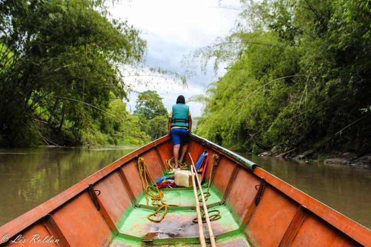 Los ríos en Colombia son como las venas del país pues cumplen una función vital, éstos llevan a todos los rincones la riqueza que en ellos está. Son muchas las poblaciones colombianas que dependen ...