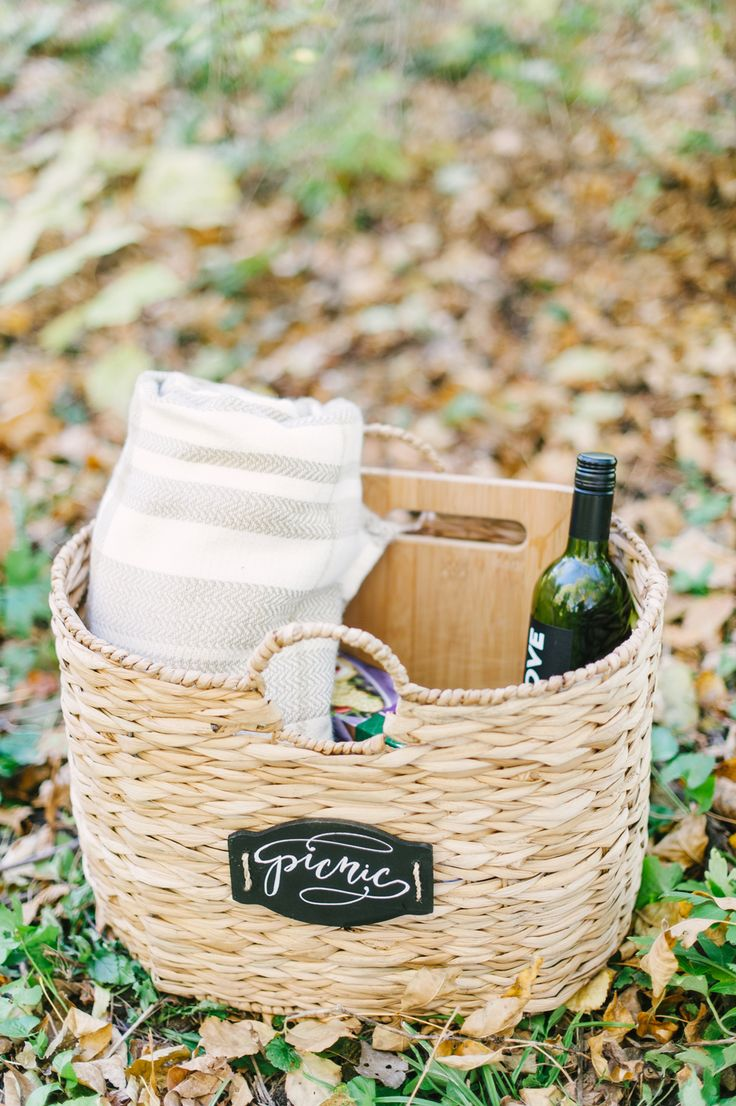 Ideas For A Picnic Basket Gift : Best picnic anyone images on ideas