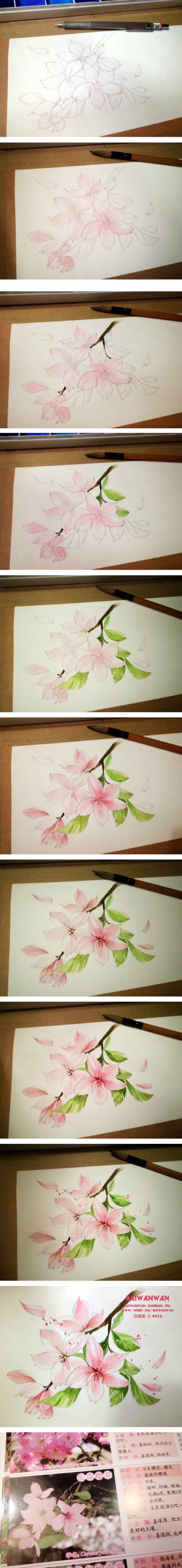 Watercolor tutorial - Cherry Blossoms