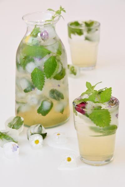 Domácí meduňkový sirup / Použití bylinek / Naši pěstitelé & sluneční bylinky…