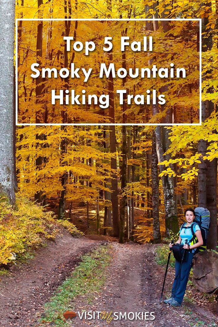 Top 5 Fall Smoky Mountain Hiking Trails in Wears Valley