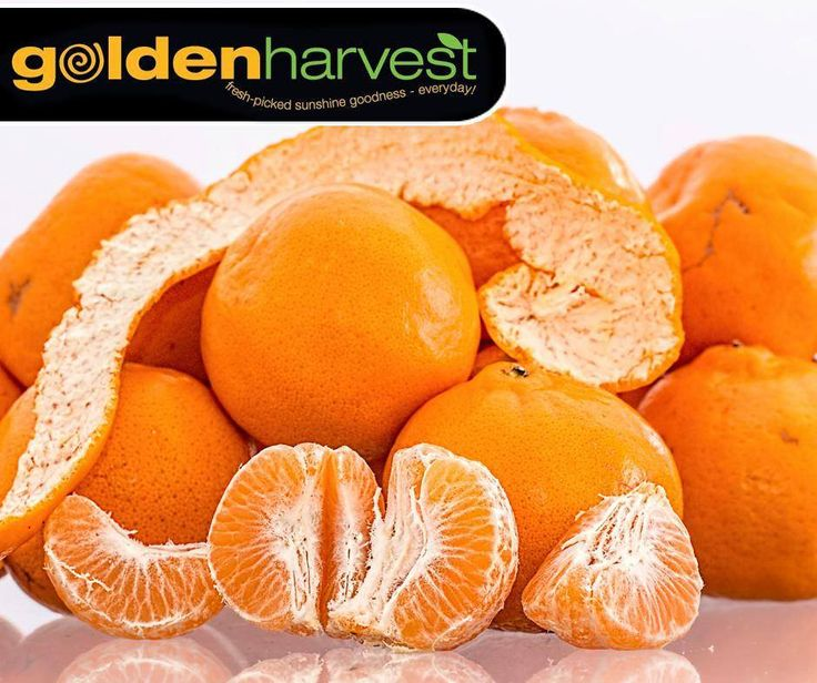 1 hr ·   #DidYouKnow that oranges contain vitamin C, fiber, potassium and choline, which are all good for your heart. Visit your nearest #GoldenHarvest store for our fresh produce.