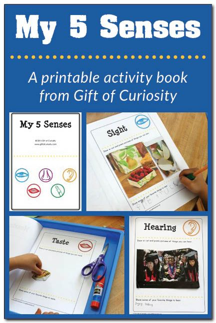 Five senses activities: A printable My 5 Senses activity book plus a link to a five senses sorting activity #5senses #handsonlearning || Gift of Curiosity