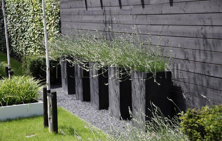 mooie hoge zwarte plantenbakken met lavendel tegen zwarte schutting
