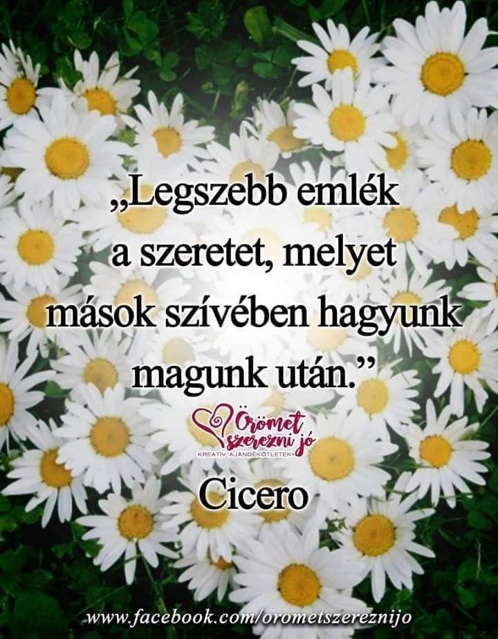 idézetek fényképalbumba Pin szerzője: Katalin Trefeli, közzétéve itt: Fényképalbumba