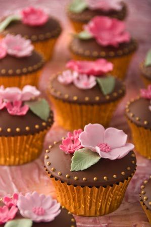 Cupcakes go down well at Hembury Court