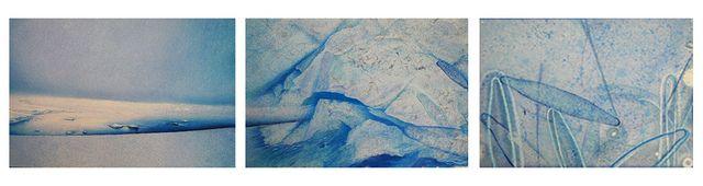 Auburn University art professor awarded National Science Foundation grant to study in Antarctica