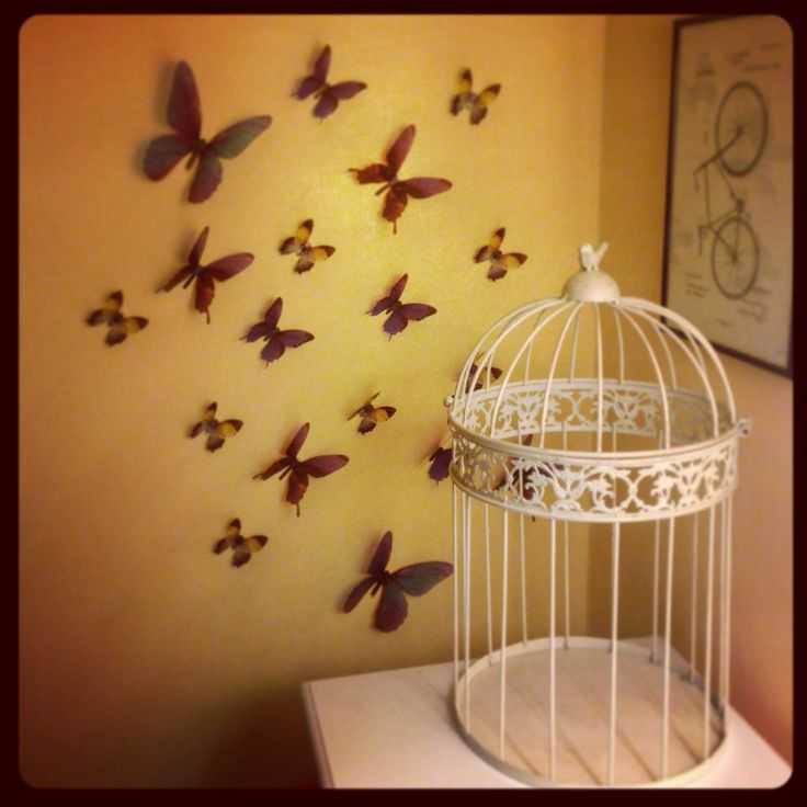 Butterflies #home