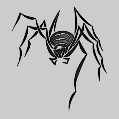 25 best ideas about spider on spider
