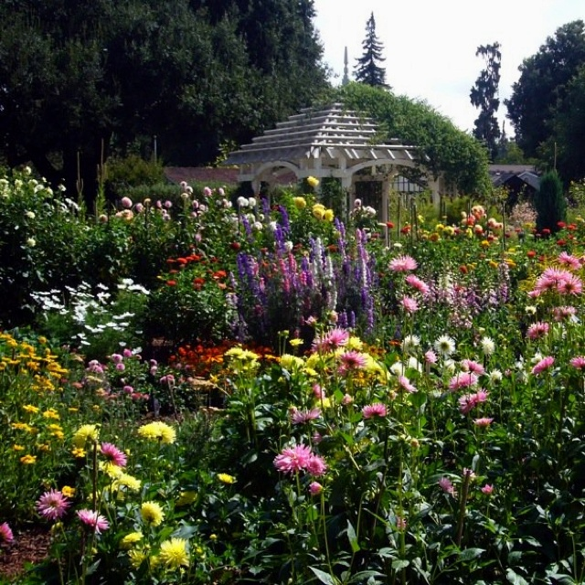 17 best images about gamble gardens on pinterest gardens