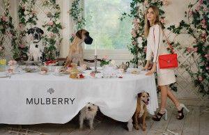 Cara Delevingne et une ménagerie pour Mulberry !