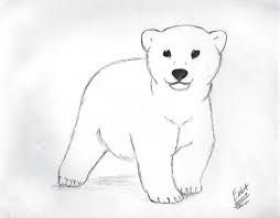 Image result for polar bear drawing