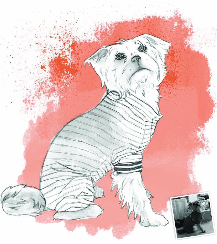Retrato personalizado para mascotas. Realizado a mano con Wacom.