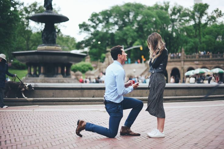 Sierra Furtado and Alex Terranova's proposal