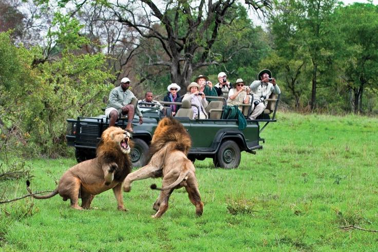 Photo by Sabi Sabi Private Game Reserve