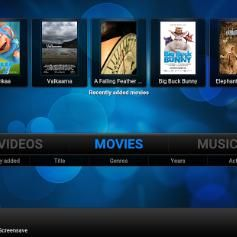 FREE SKY TV Kodi (REMOTE) Install Service. Laptops Only #kodi #movies #sports